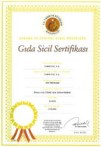 deni-triwardana-sertifikasi.jpg